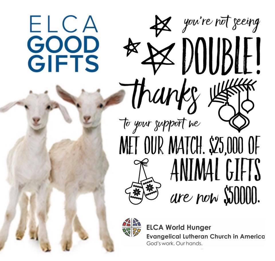 Make a gift today: http://www.elca.org/goodgifts . #untilallarefed #thegiftthatkeepsongiving #pairofgoats #tistheseasonpic.twitter.com/bAEximUtb9