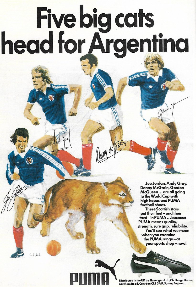 Puma five big cats head for argentina