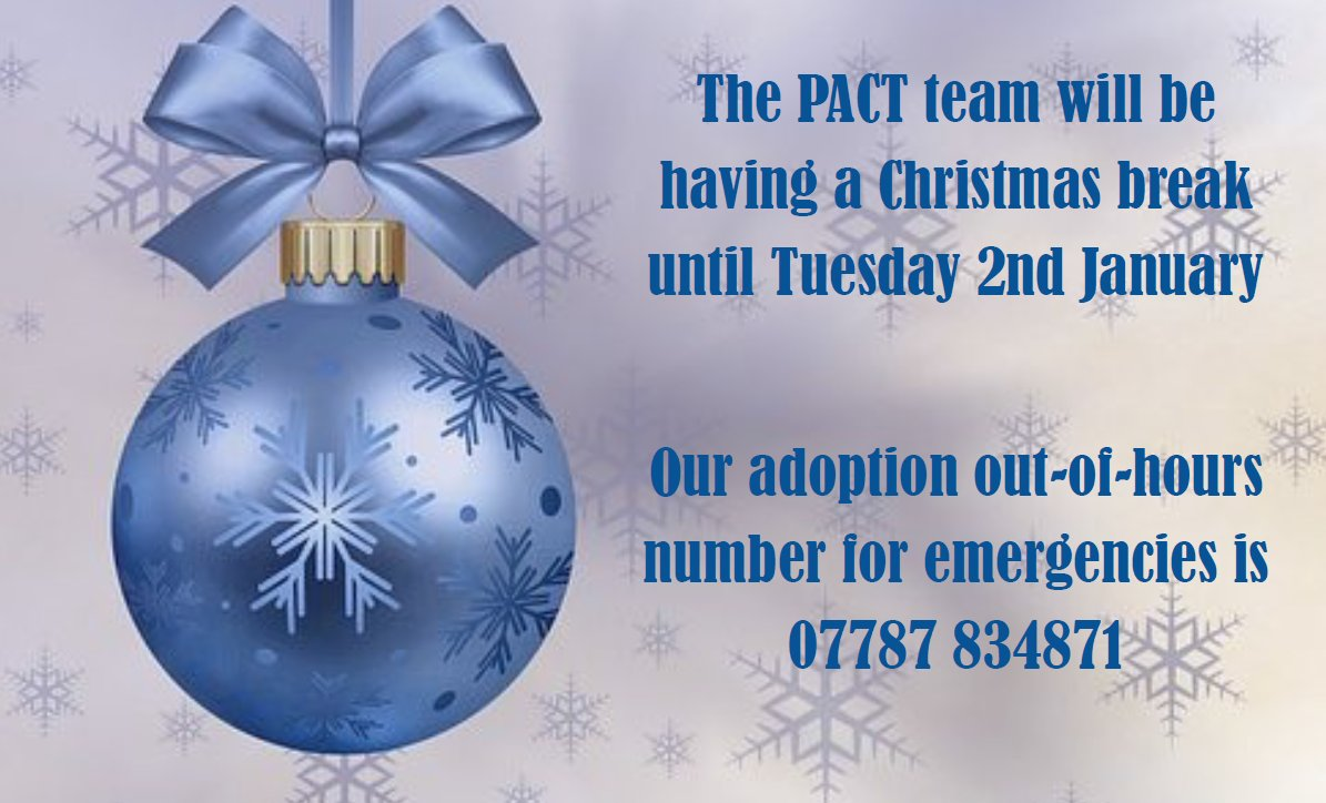 The Christmas Pact.Pact On Twitter Merry Christmas From Everyone At Pact We