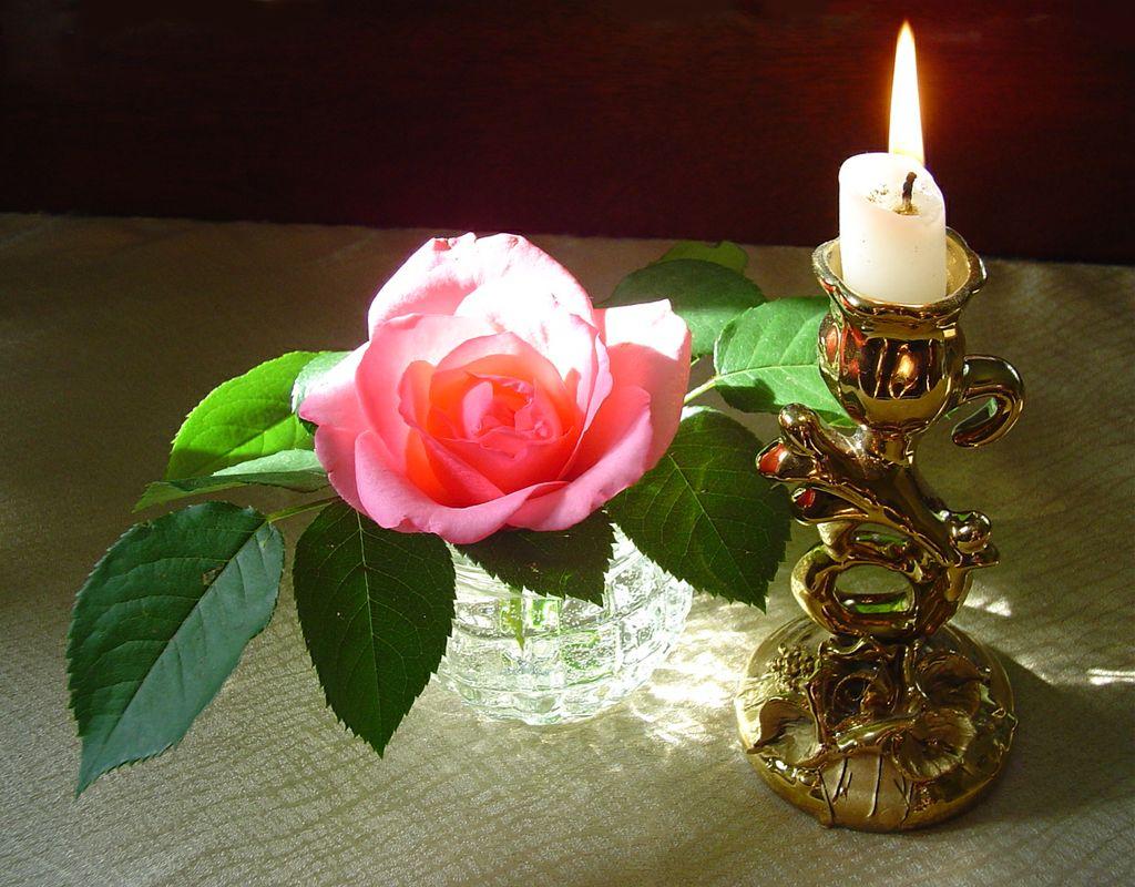 Картинки цветы и свечи