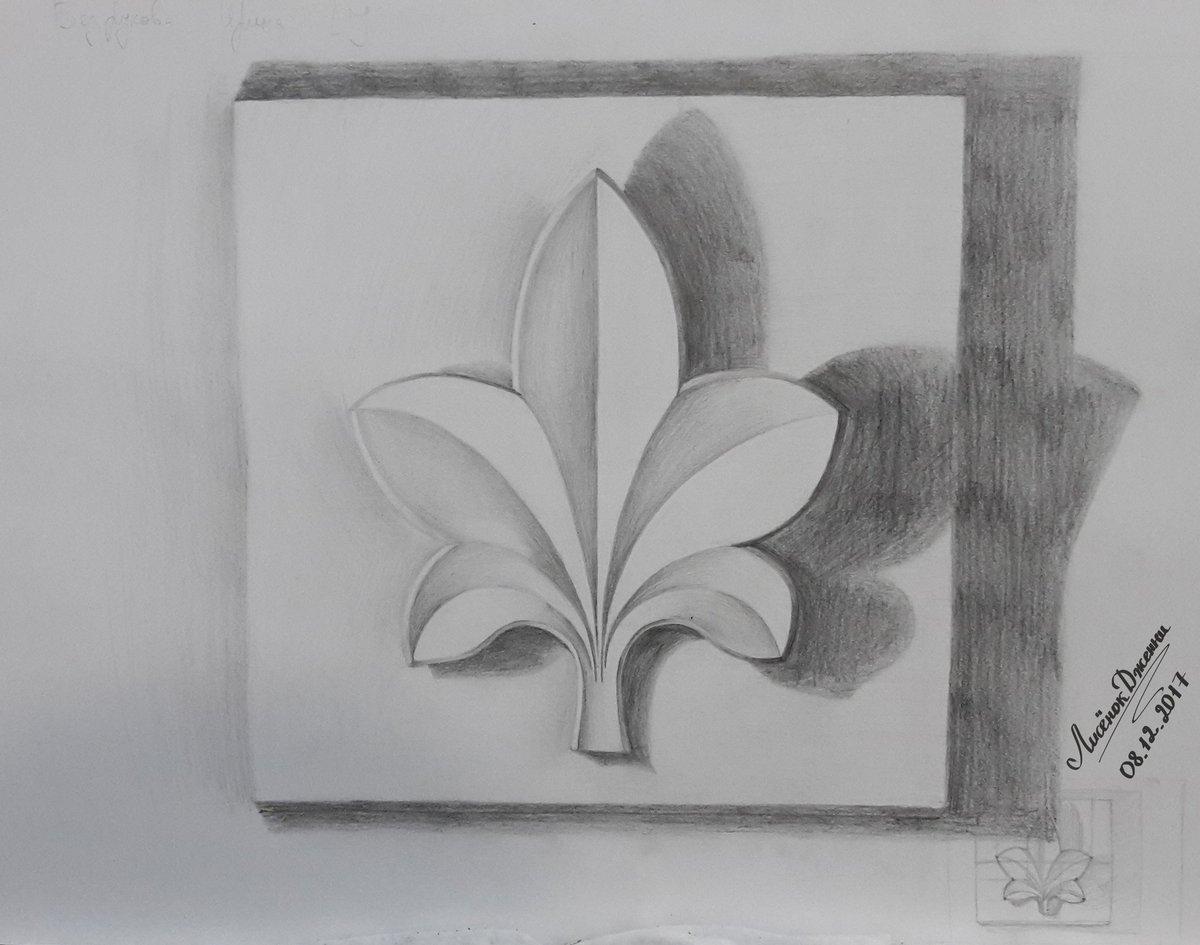 Розетки листьев в картинках