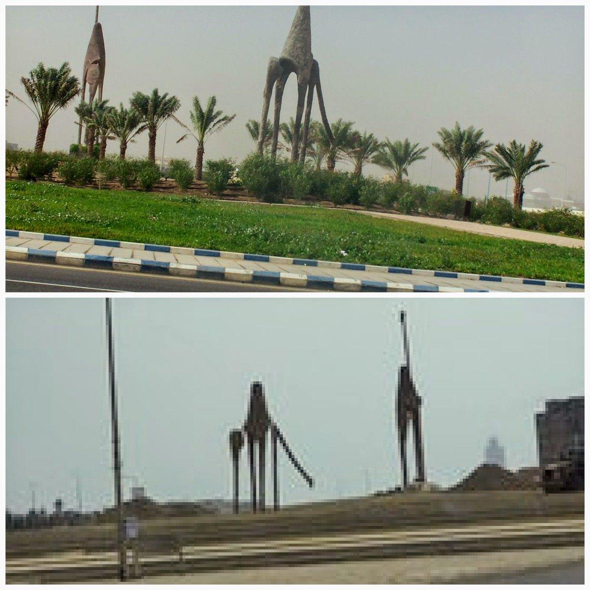 Camel Roundabout دوار الجمال أبحر 2