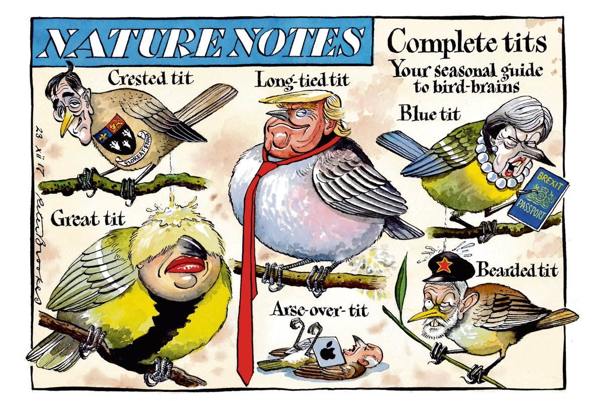 "peter brookes on twitter: ""my cartoon saturday @thetimes. nature"