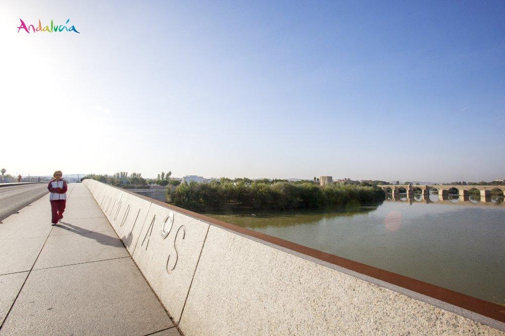 La luz del #Guadalquivir ilumina el ciel...