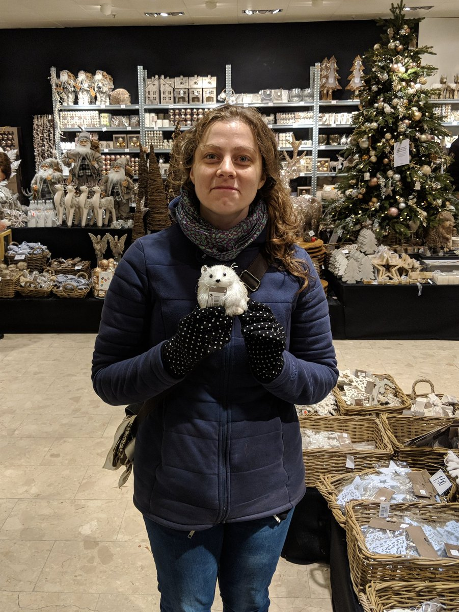"""... to check out some big Christmas Superstore for other holiday decorations for our tree, and it was a mistake. """"Oh no! We have a Christmas hedgehog now!"""