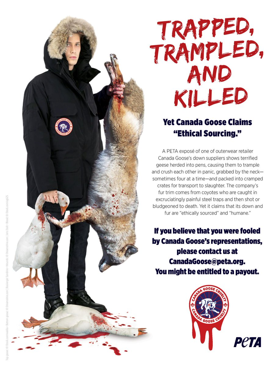 canada goose company ethics