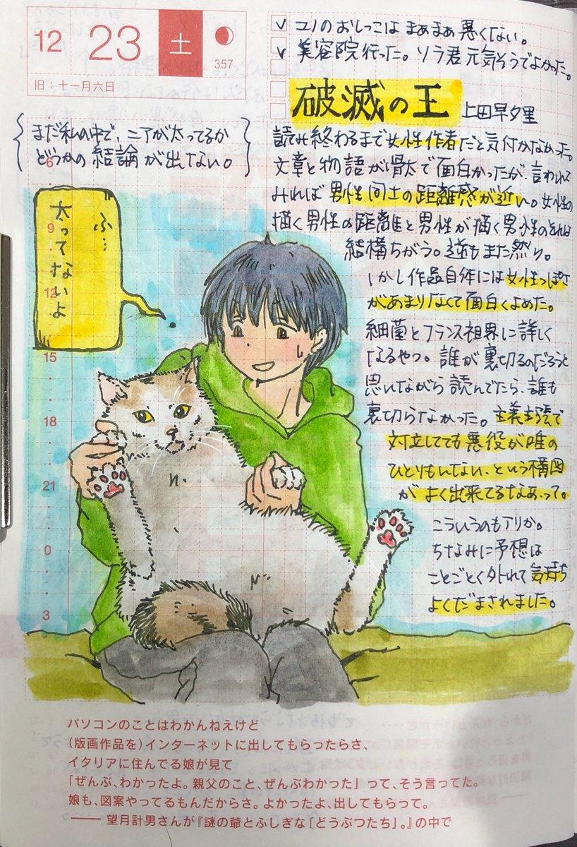 甘木 On Twitter 猫を描くとなぜこんなにも怖ろしい顔になるのか目か