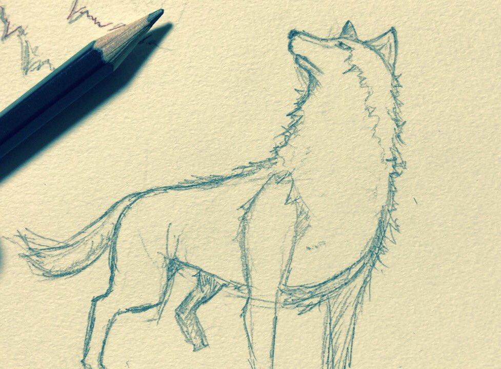 シゲ333 On Twitter またまた狼の描き方を見ながらカキカキ 動物