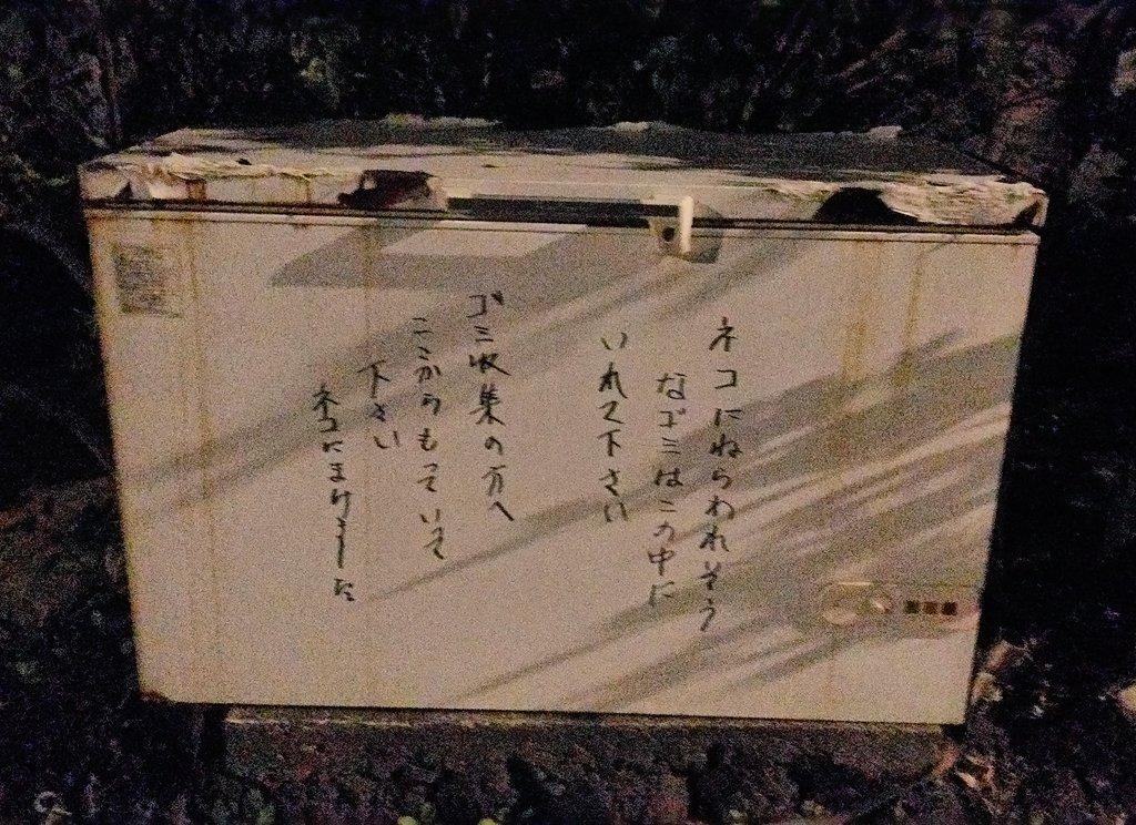 ネコにまけました  #東京の離島1ヶ月渡り歩きます会社