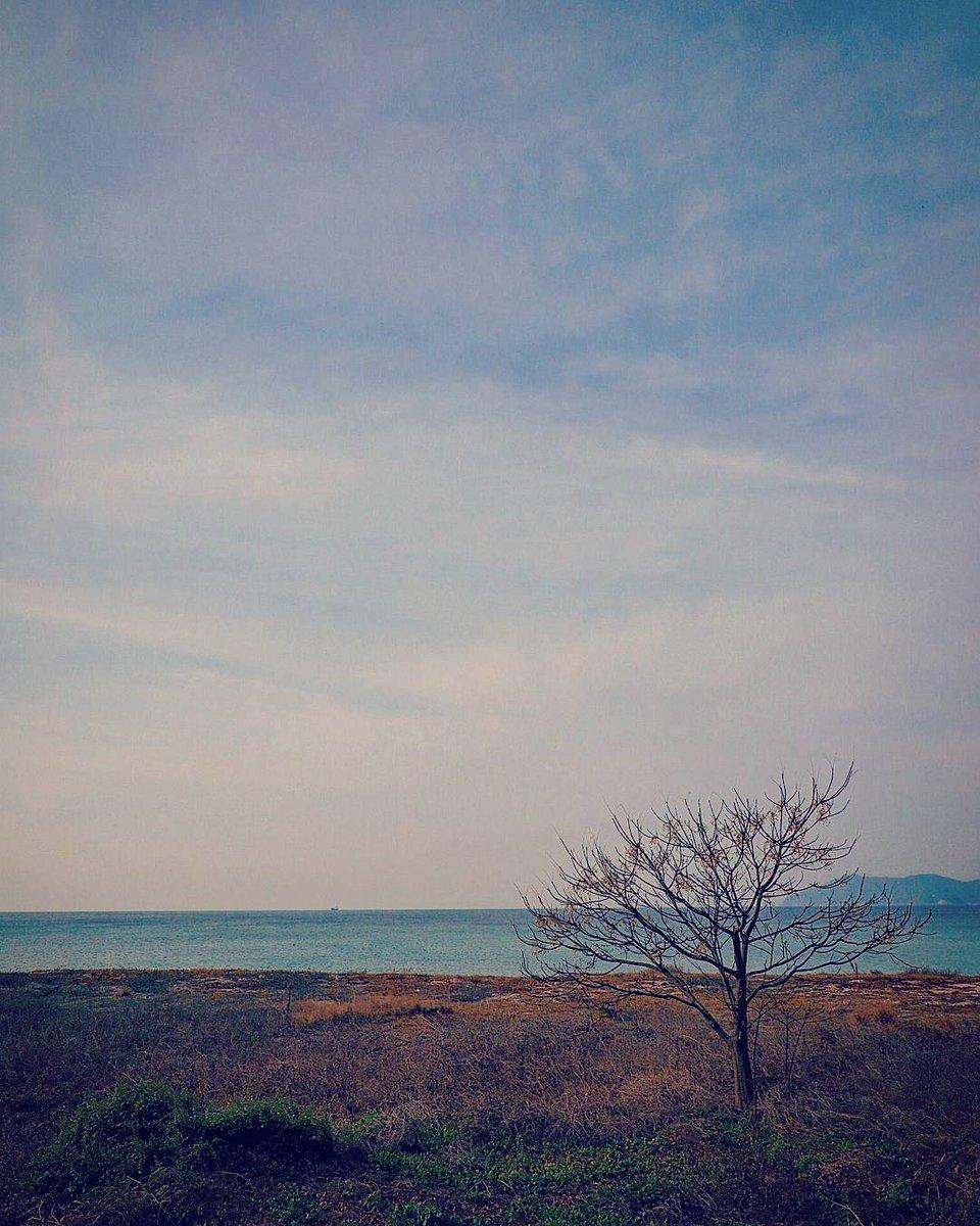 総延長3kmを誇る、光市虹ヶ浜海岸。点で切り撮ると、いろんな表情を見ることができます。写真は、その東端に近い場所で撮りました。 https://t.co/VH8THunqNY