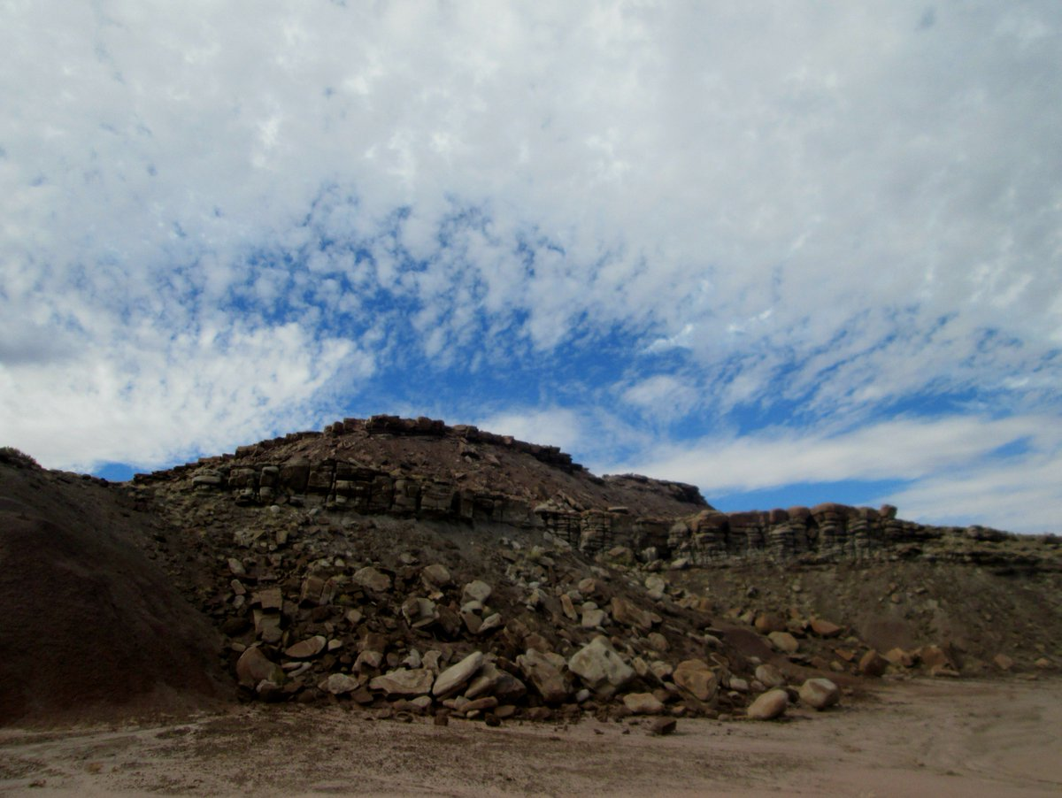 Petrified Forest NP on Twitter: \