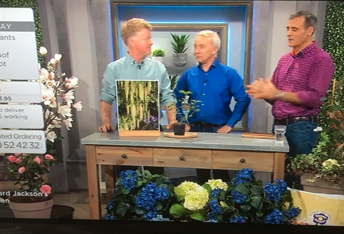 Tune In To @qvcuk This Morning Sunday January 7th For Tips U0026 Expert Advice  From @RichardQVC. Lots Of FANTASTIC Plants U0026 Products On Offer.