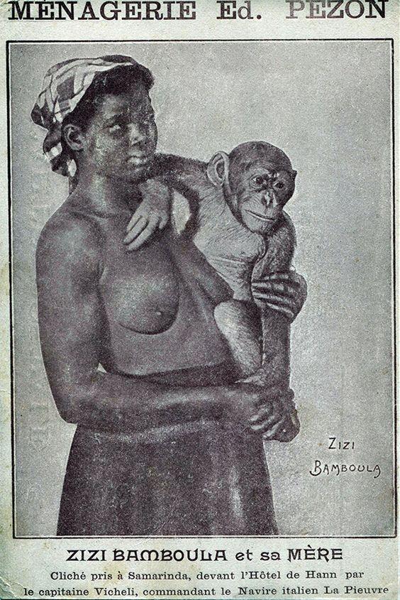 Scan d'une carte postale datant de 1908 noir et blanc provenant de la ménagerie Edmond Pezon montrant en portrait, une femme noire plûtôt adulte, seins nus portant dans ses bras un chimpanzé. Sous l'image, une inscription : Zizi Bamboula et sa mère Cliché pris à Samarinda, devant l'Hôtel de Hann par le capitaine Vicheli, commandant le Navire italien La pieuvre.