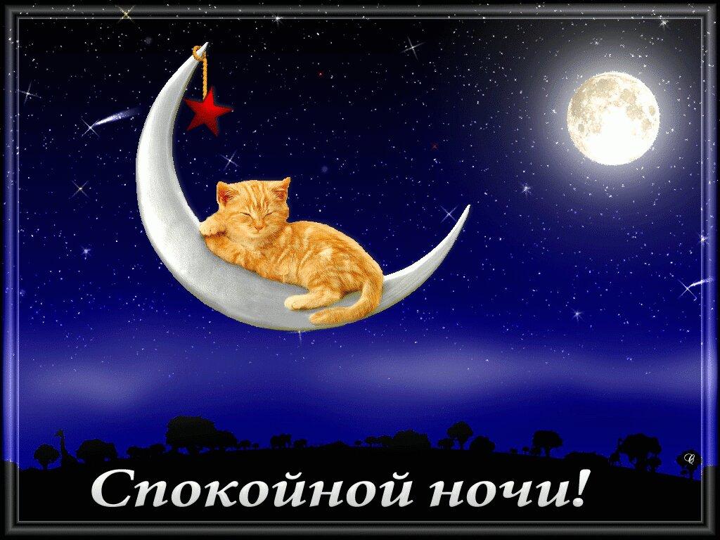 Картинка для друзей спокойной ночи