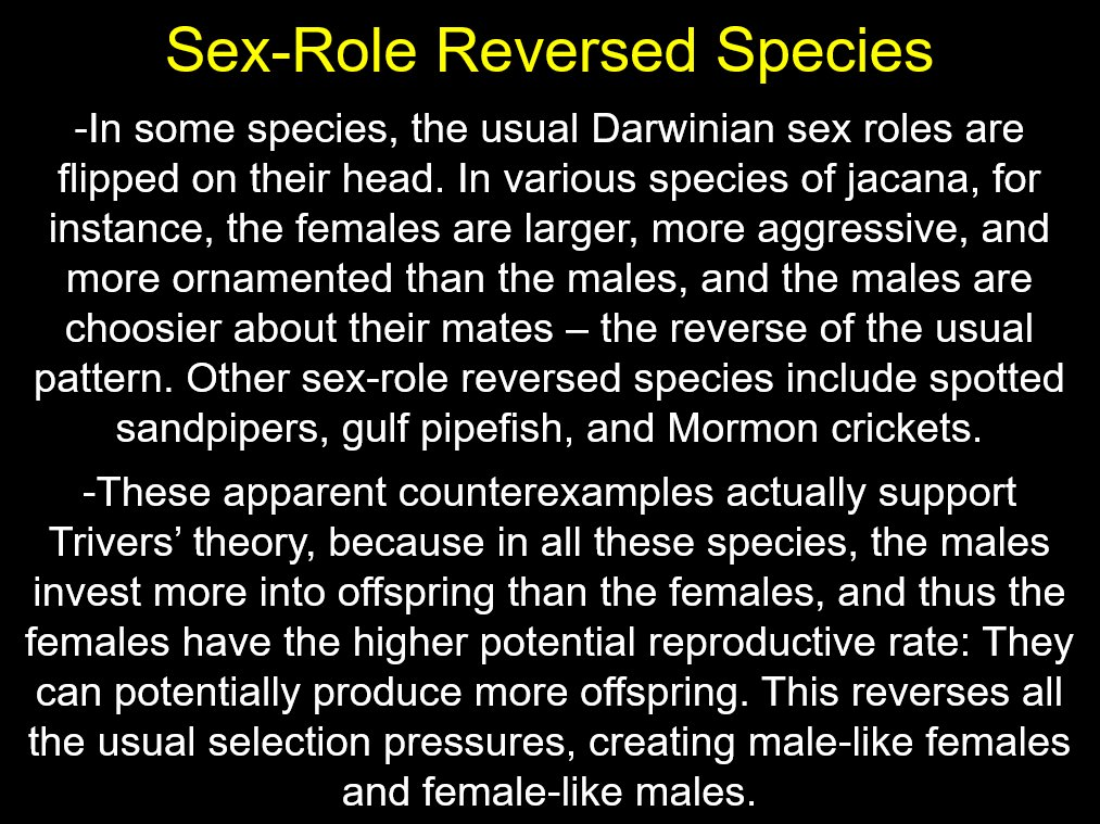 Other terms for sex