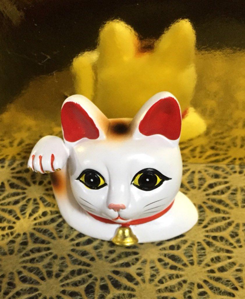 test ツイッターメディア - セリアで見つけた生えてきた感の招き猫。可愛いので即買い。  #セリア #100均 #招き猫 https://t.co/TrM8mskMrg