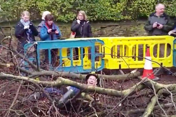 道路整備のため木を伐採する人 vs 全力で阻止しようとするハードコアな自然保護活動家 @イギリス