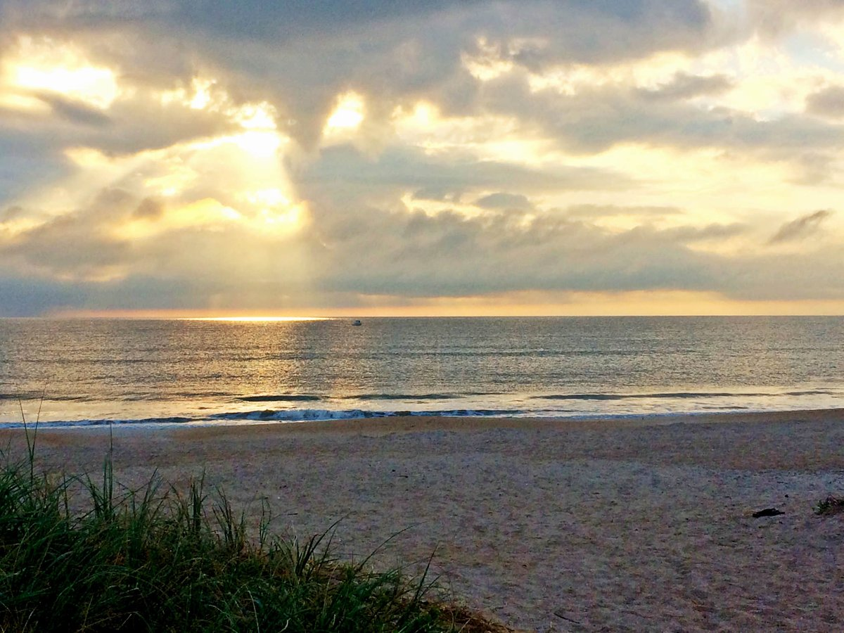 RT @ShareALittleSun: Good morning, #Florida! #LoveFL https://t.co/muktyRsNVB RT @VISITFLORIDA