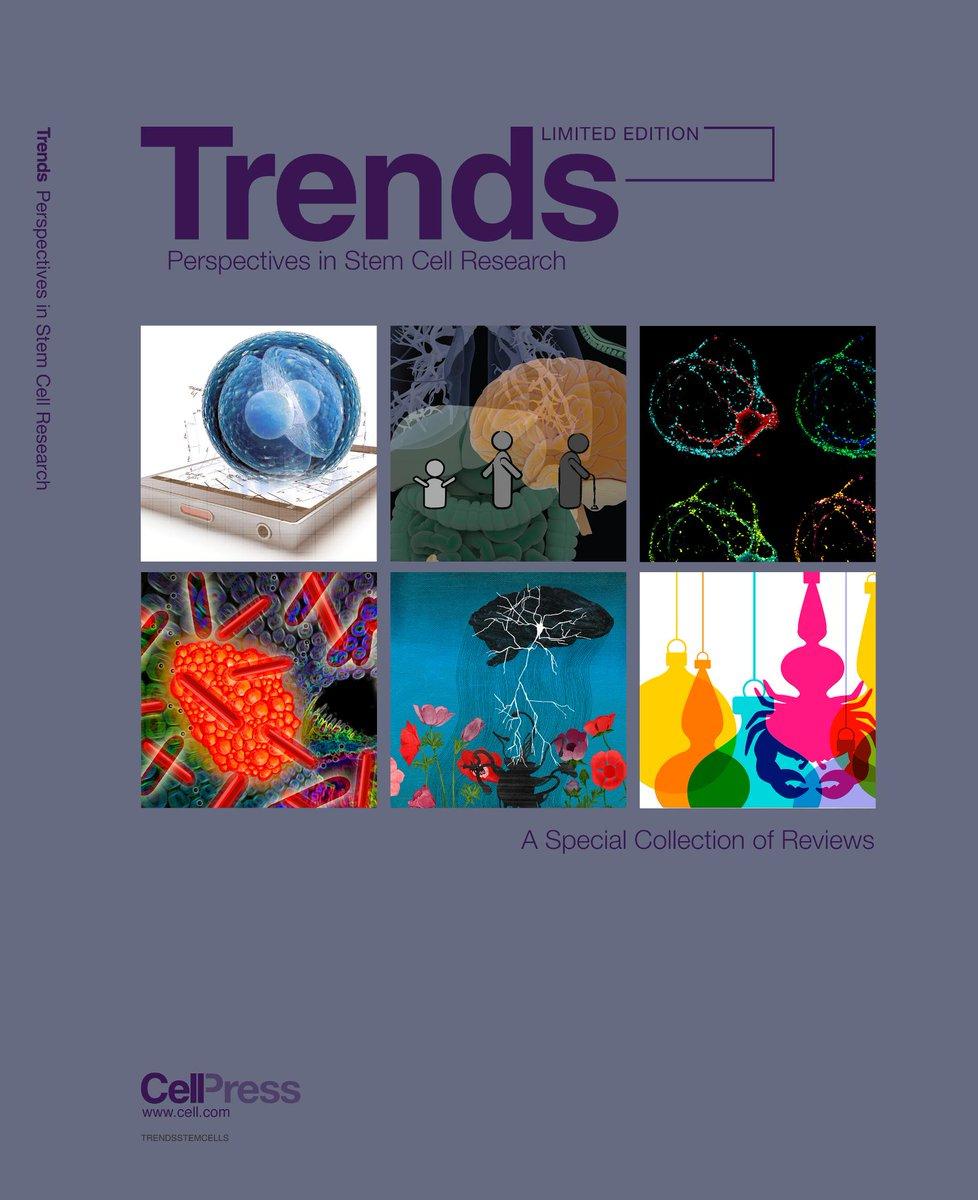 download essential neuroscience 2nd