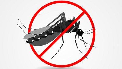 Combate ao Aedes: mitos e verdades sobre o mosquito no #BlogDaSaúde, confira! https://t.co/6oyjfDp0gR #MosquitoNão