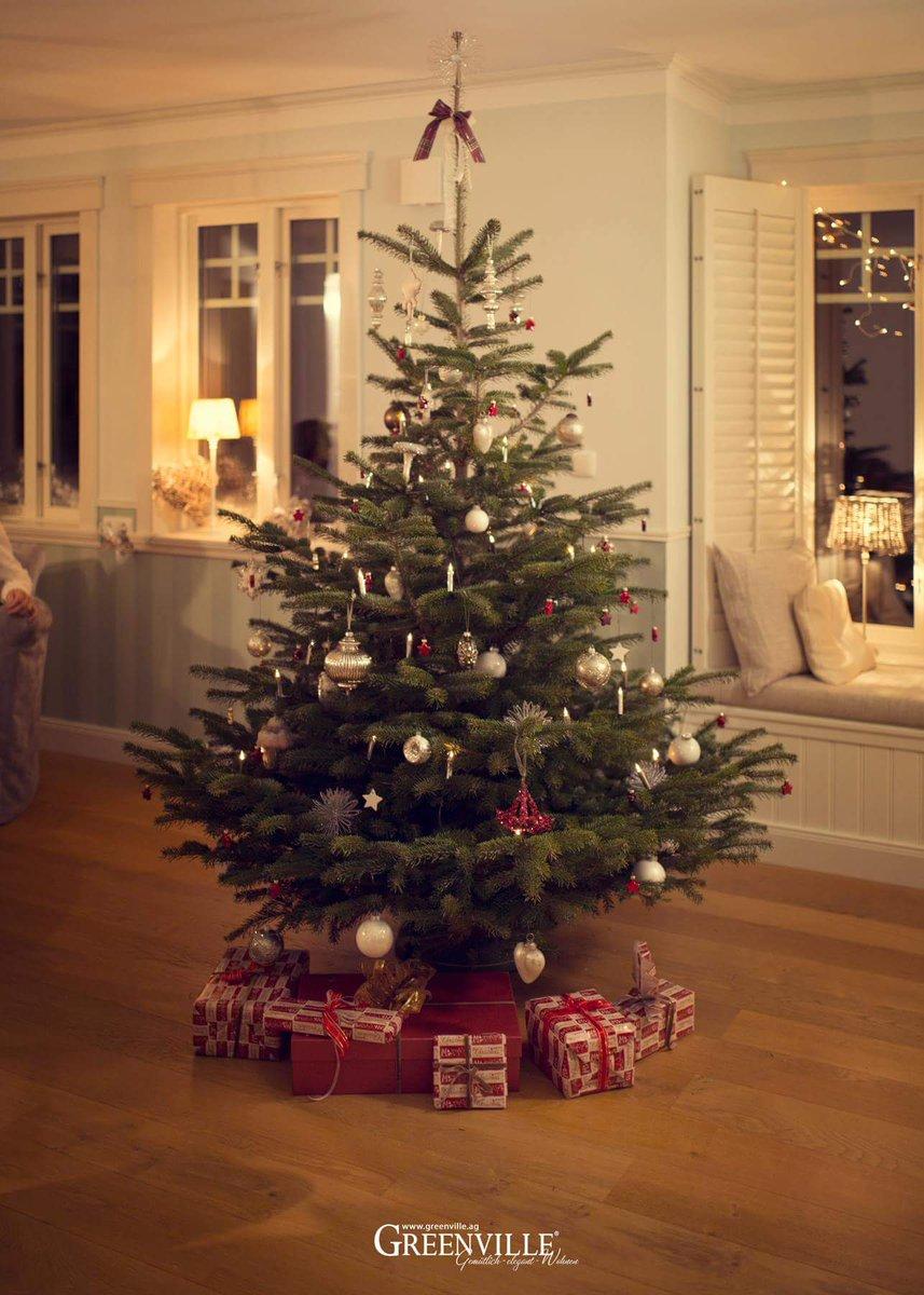 Bis Wann Bleibt Der Weihnachtsbaum Stehen.Greenville On Twitter Unser Weihnachtsbaum Im Musterhaus Wie