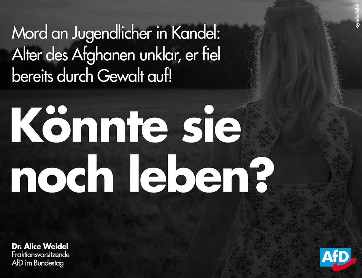 """Alice Weidel On Twitter """" Staatliches Versagen Auf Ganzer Linie"""