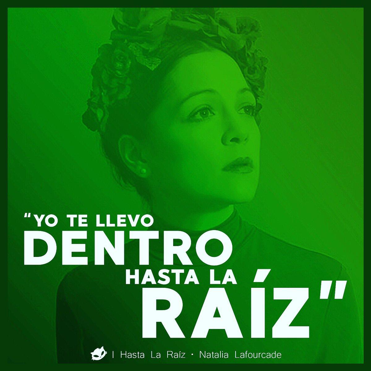 Cabeza De Pan در توییتر Frases Chidas 4 Yo Te Llevo