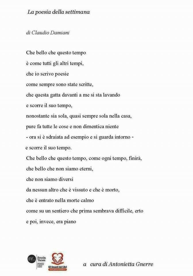 Amato antonietta gnerre (@antoniettagner2) | Twitter QN44