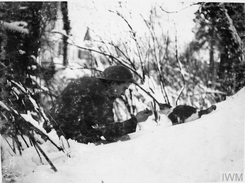 British soldier 'shakes hands' with a kitten on a snowy bank, Neulette, 1917