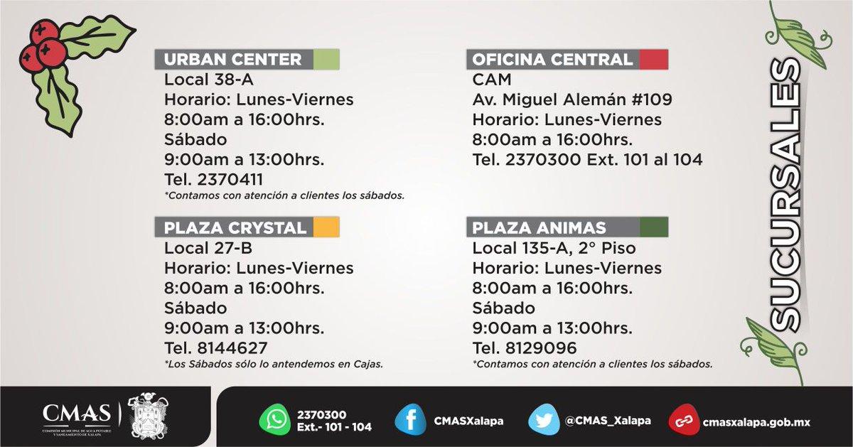 CMAS Xalapa on Twitter: \