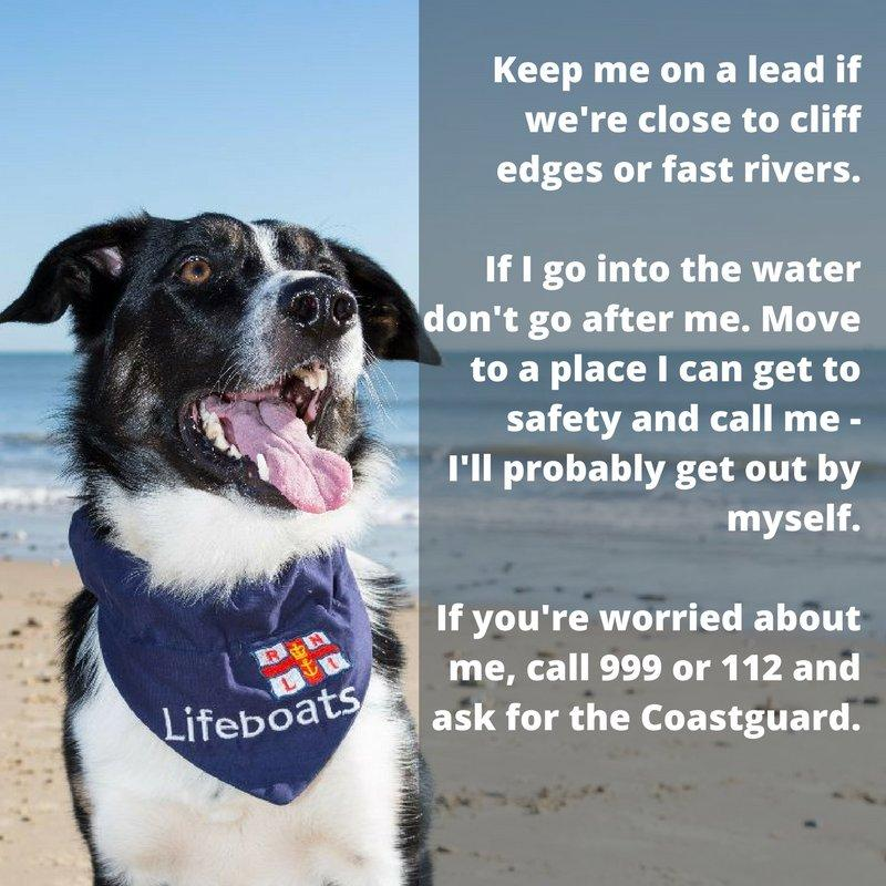 RNLI Exmouth CSO on Twitter: