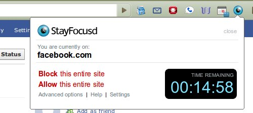 custom reflective essay writer website au