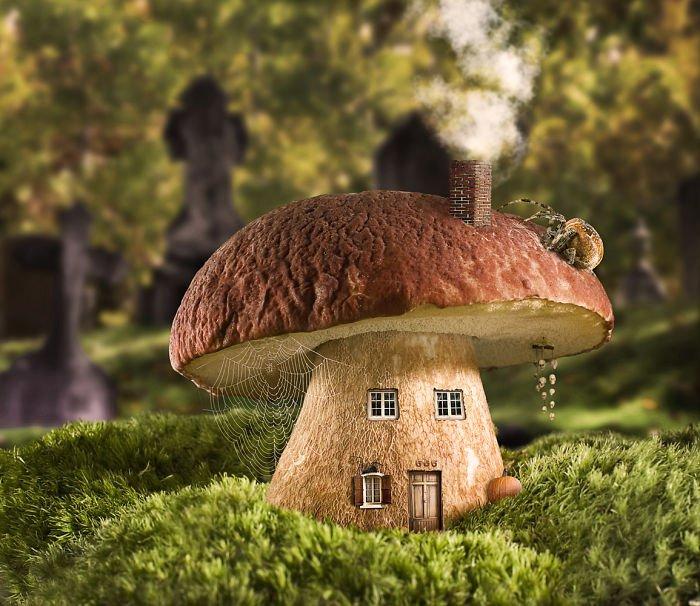 Картинка смешной дом