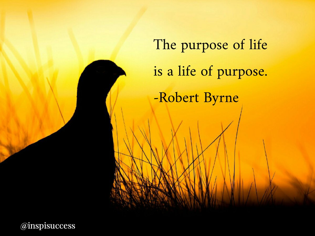 "Purpose Of Life Quotes Inspisuccess On Twitter ""the Purpose Of Life Is A Life Of Purpose"