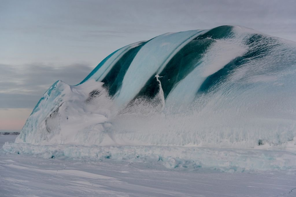 The Antarctic Report On Twitter Celebrating Great Photos Of - 12 things to see and do in antarctica
