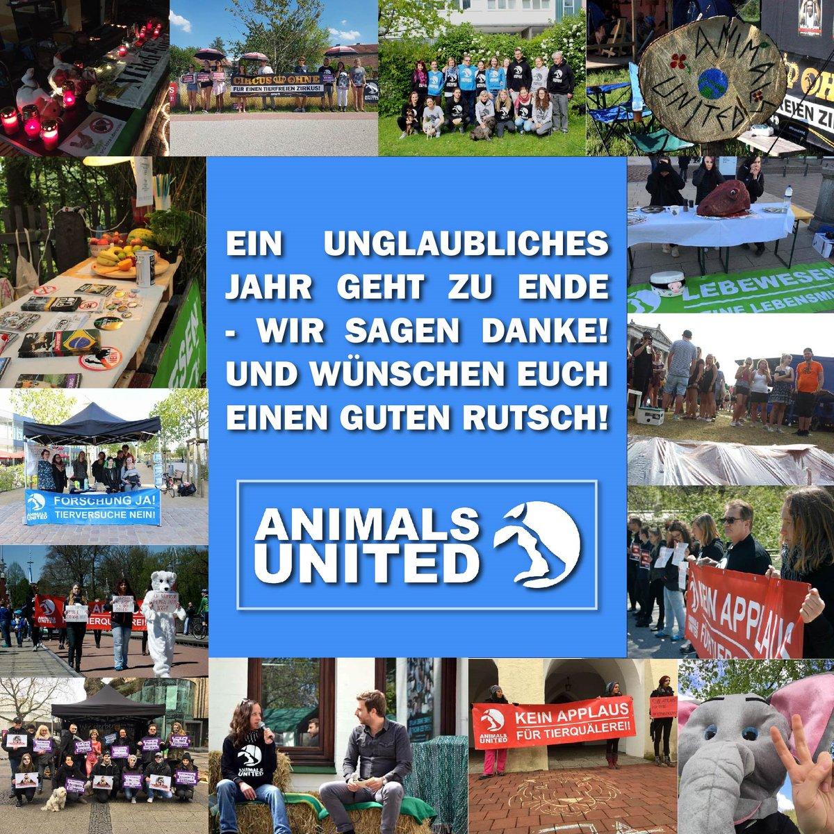 ANIMALS UNITED e.V. on Twitter: \