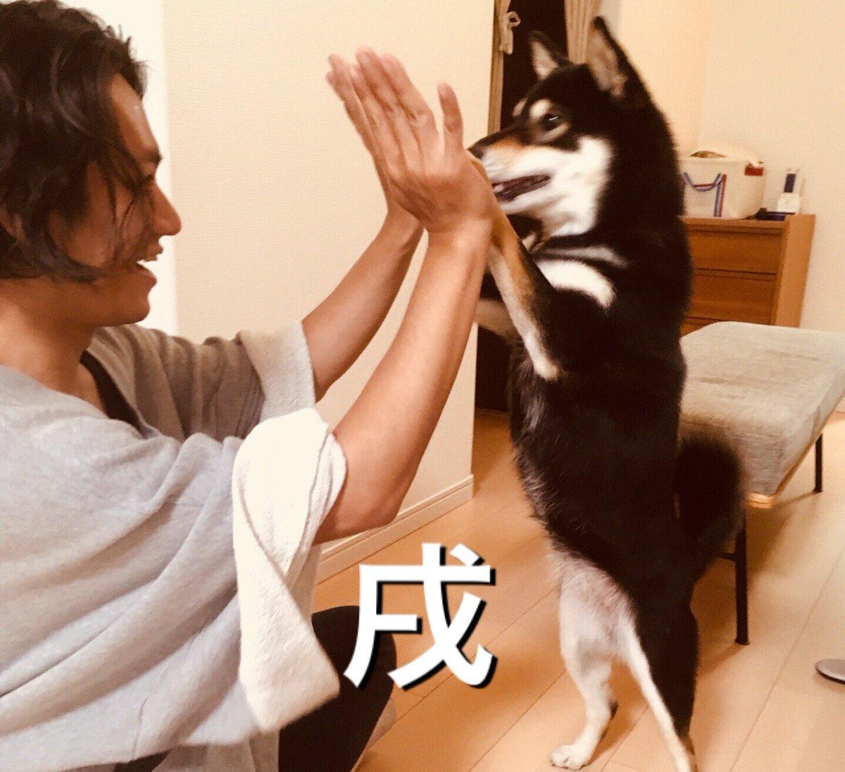 あけましておめでとう!  今年もよろしくお願いします!  武田