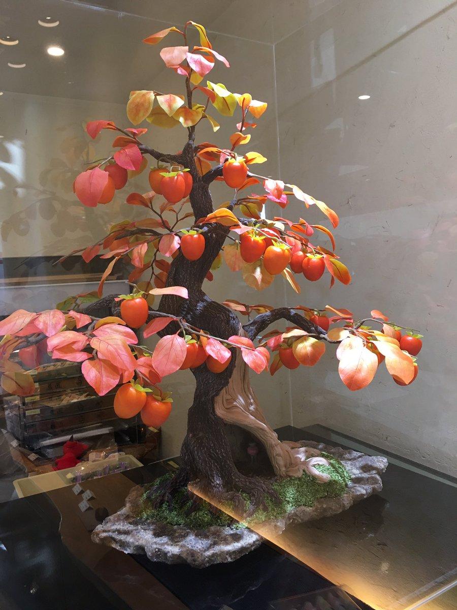 年の瀬に白妙にお年賀を買いに行ったら、予告なく盆栽のネタバレされた僕の気持ちわかる?  近くで見ると割と分かるんだけど、木の質感は結構リアルだった。  #格付けチェック #格付け