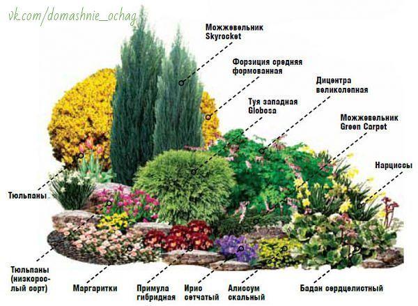 Схемы цветов из ленточек