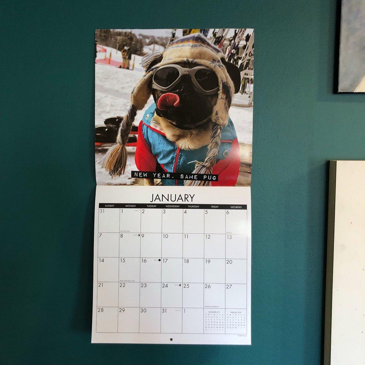 Doug The Pug On Twitter Who Hung Up Their 2018 Calendar Already