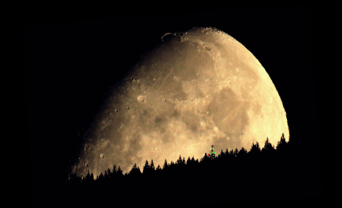 #Monster #Eye or #Moon and #Forest? Great shot from @lebribri #France #StunningFoto  #content