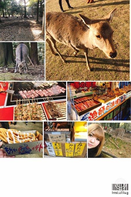 1 pic. 初詣は奈良の春日大社に 行ってきました٩(ˊᗜˋ*)و  すっごい人でめちゃくちゃ 歩いて新年早々筋肉痛です笑  白鹿みくじで 大吉も出たので今年は いい年になりますよおに❤️ https://t