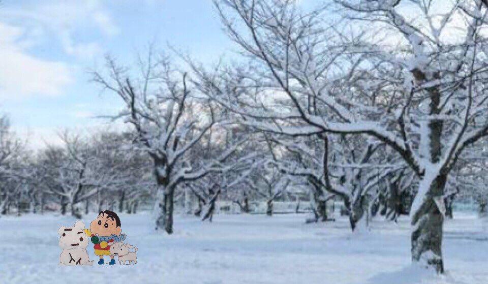 雪の冷たさがあなたの温かみを教えてくれる