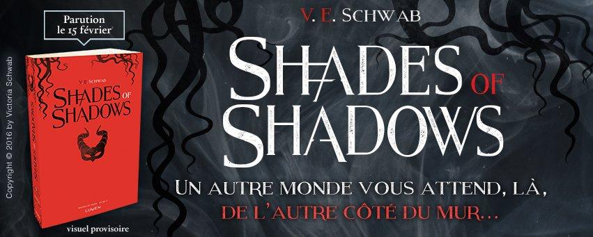 Image result for shades of shadows schwab lumen