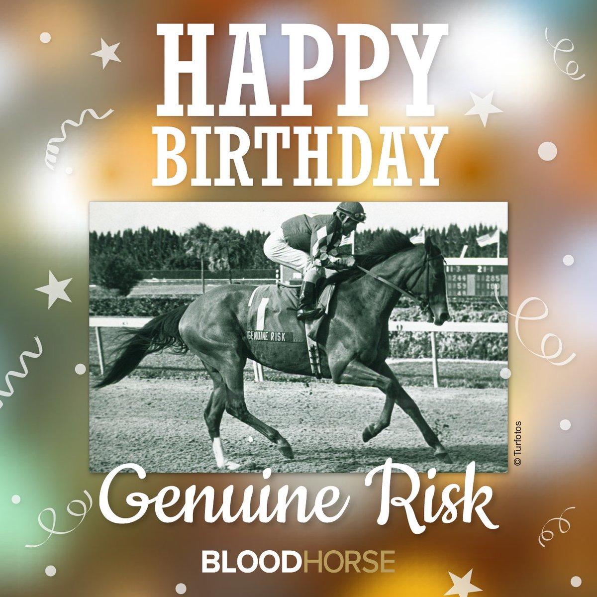 BloodHorse On Twitter Celebrating The Birthday Of 1980 Kentucky Derby Winner Genuine Risk Born February 15 1977