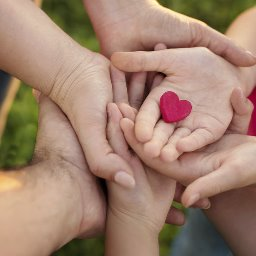 Image result for heart in hand
