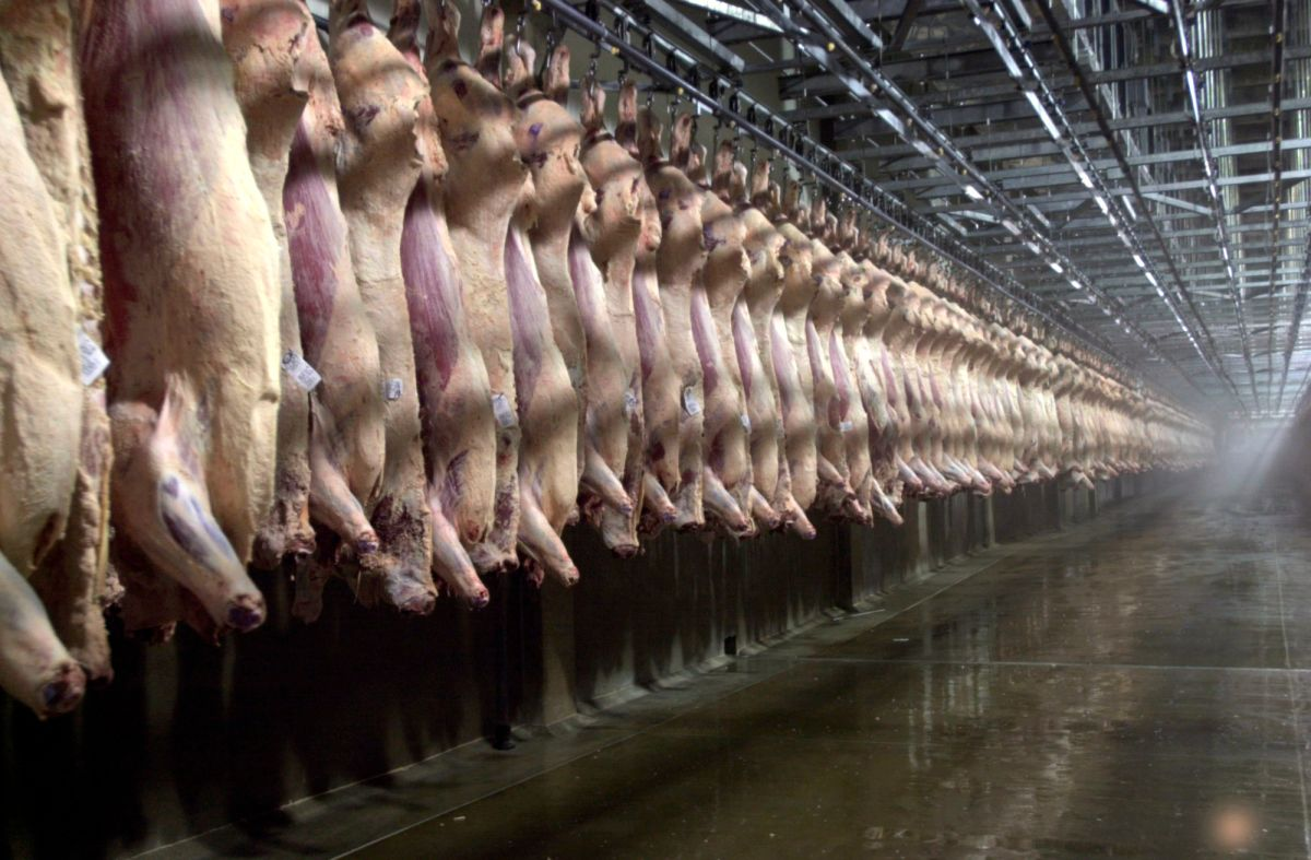 the current state of americas meat industry We serve america's restaurants representing nearly 500,000 restaurant businesses, we advocate for restaurant and foodservice industry interests and provide tools and systems that help members of all sizes achieve success.