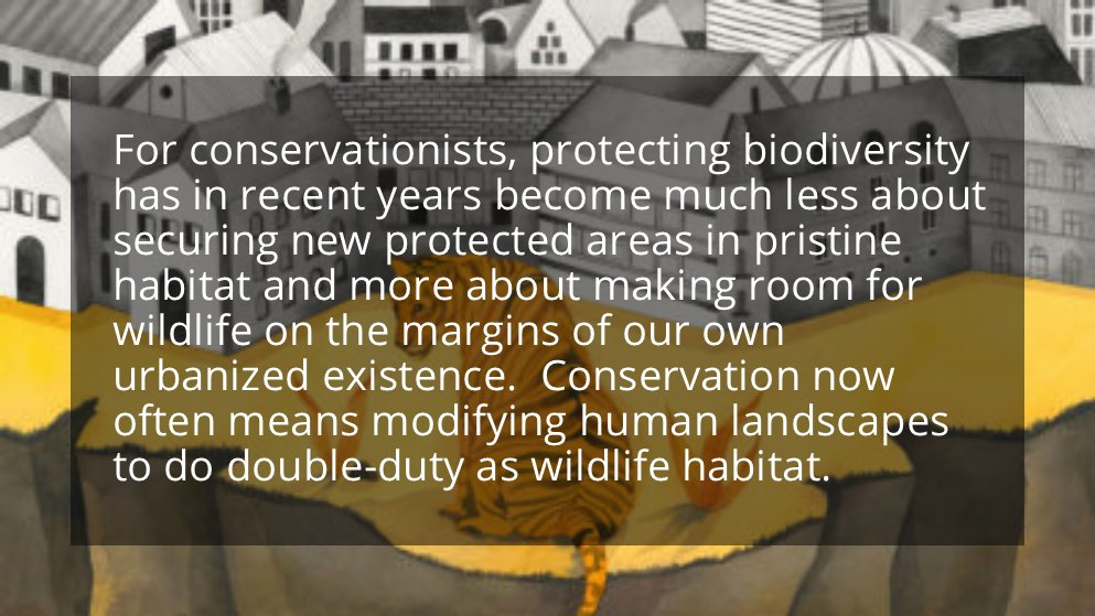 """Research has demonstrated substantial improvements in #biodiversity from wildlife corridors as little as 25 yards in width.""  Read @YaleE360's article on #urbannature here: https://t.co/EDH9dufj2D"