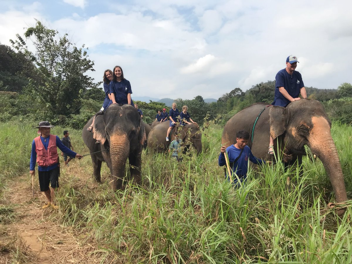 Day 6 in: We went to Baan Chang Elephant Park where we learned how to be a Mahout (Elephant caretaker). This is a Rescue Sanctuary & these elephants were rescued from the Teak Lumber Industry where they pulled the wood from the jungle. #thailand #baanchangelephantpark pic.twitter.com/uJkQH0hn7B