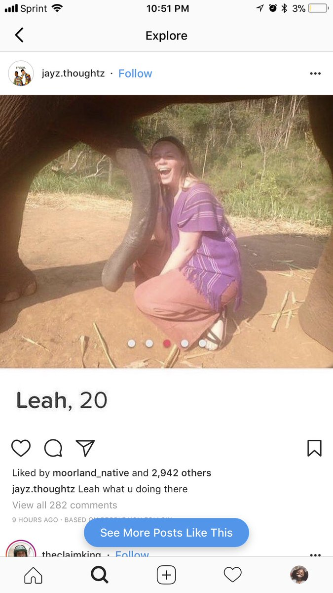 Teens suck elephant cocks for the